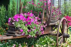 Bloemen op de wagen Royalty-vrije Stock Foto's