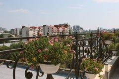 Bloemen op een balkon Royalty-vrije Stock Foto's