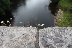 Bloemen op een brug Stock Afbeeldingen