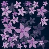 Bloemen op een donkere achtergrond Royalty-vrije Stock Foto's