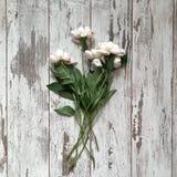 Bloemen op een houten achtergrond stock afbeeldingen