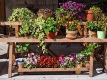 Bloemen op een houten bank stock afbeelding