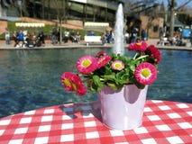 Bloemen op een lijst naast een fontein Royalty-vrije Stock Foto's
