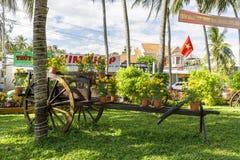 Bloemen op een oude houten paardkarikatuur in Nam Tien, Vietnam royalty-vrije stock foto