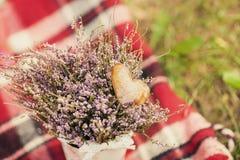 Bloemen op een plaid Royalty-vrije Stock Afbeeldingen