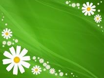 Bloemen op groene achtergrond Vector Illustratie