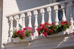 Bloemen op het balkon Stock Afbeelding