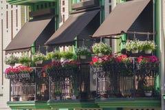 Bloemen op het balkon van een luxehuis in een klassieke stijl Stock Fotografie