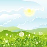 Bloemen op het gebied, vector Stock Foto's