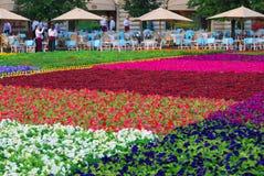 Bloemen op het Rode Vierkant Stock Foto