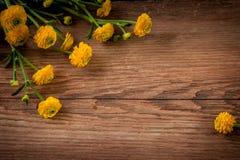 Bloemen op houten achtergrond royalty-vrije stock afbeelding