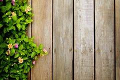Bloemen op houten vloer Stock Afbeelding