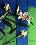 Bloemen op lijst Stock Afbeeldingen