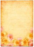 Bloemen op Oud Document Stock Foto
