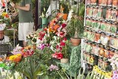 Bloemen op Rambla Boulevard Het verkoopt hier altijd vele bloemen Stock Afbeelding