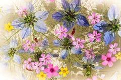 Bloemen op water royalty-vrije stock afbeelding