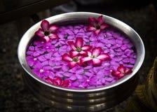 Bloemen op water in een kom, India Royalty-vrije Stock Foto's
