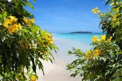 Bloemen op zandig strand met tropisch eiland op achtergrond Stock Afbeeldingen