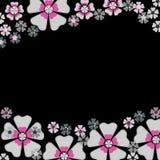 Bloemen op zwarte Royalty-vrije Stock Afbeeldingen