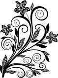 Bloemen ornament - vector Stock Afbeeldingen