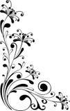 Bloemen ornament - vector Royalty-vrije Stock Afbeeldingen