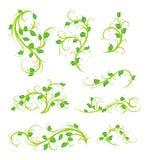 Bloemen ornamenten stock illustratie