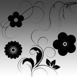 Bloemen ornamenten met gradiënt Royalty-vrije Stock Afbeelding
