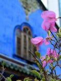 Bloemen over blauw huis Royalty-vrije Stock Afbeeldingen