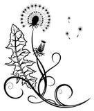 Bloemen, paardebloem Stock Afbeelding
