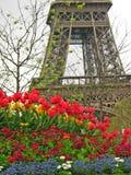 Bloemen in Parijs stock afbeelding