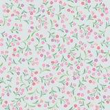 Bloemen patroon De naadloze achtergrond van de bloem Bloei sier Stock Afbeeldingen