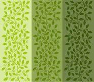 Bloemen patroon met ilex Stock Afbeeldingen