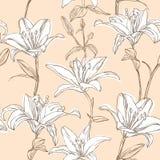 Bloemen patroon met lelie Stock Afbeeldingen