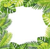 Bloemen patroon Tropische Groene Bladeren Exotisch wildernis en palmblad Vector bloemenelement op witte achtergrond royalty-vrije illustratie