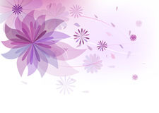 Bloemen patroonachtergrond Stock Afbeeldingen