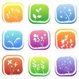 Bloemen pictogrammen Stock Foto's