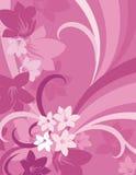 Bloemen Reeks Als achtergrond Stock Afbeeldingen