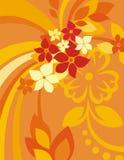 Bloemen Reeks Als achtergrond Royalty-vrije Stock Fotografie