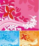 Bloemen Reeks Als achtergrond Royalty-vrije Stock Afbeeldingen