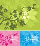 Bloemen Reeks Als achtergrond Stock Fotografie