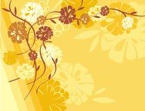 Bloemen Reeks Als achtergrond Stock Afbeelding