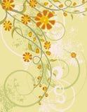 Bloemen reeks als achtergrond Royalty-vrije Stock Foto