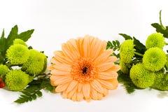 Bloemen regeling royalty-vrije stock afbeelding