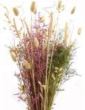 Bloemen Regeling in de Vaas van de Rots Stock Foto