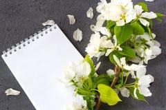 Bloemen samenstelling Concept het schrijven van een romantische brief voor Valentijnskaartendag stock afbeelding