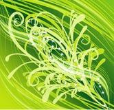 Bloemen samenvatting vector illustratie