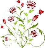 Bloemen samenvatting Stock Foto's