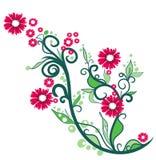 Bloemen sierillustratie Royalty-vrije Stock Foto