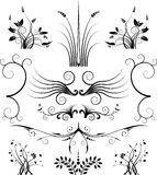 Bloemen Symmetrie Royalty-vrije Stock Fotografie