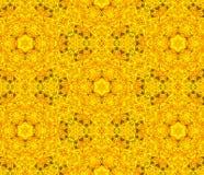 Bloemen symmetrisch ontwerp. Stock Afbeeldingen